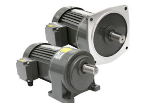 Foot mounted and flange mounted gearmotor